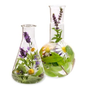 Flasks with Herbs & Flowers in it
