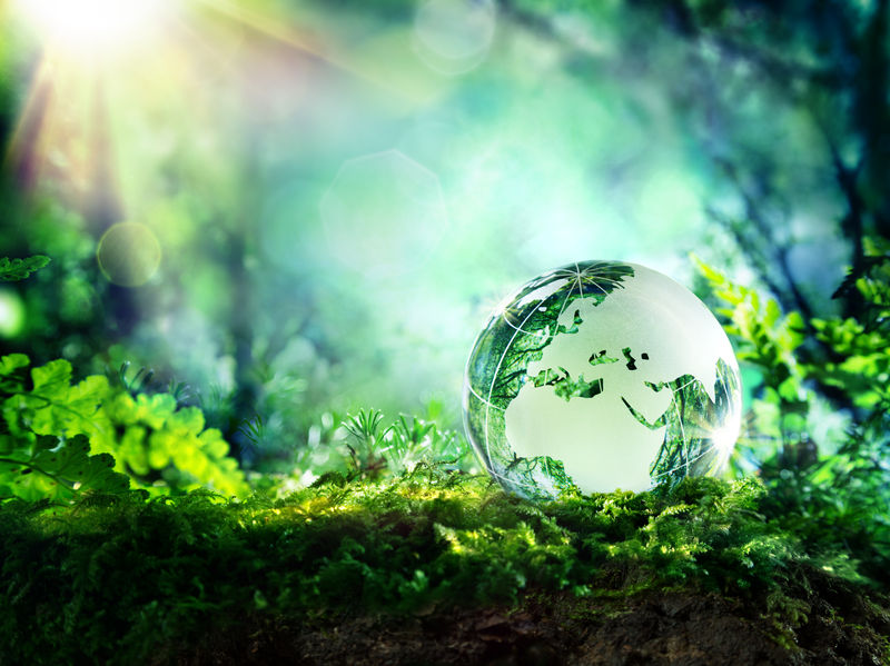 Crystal Ball with Leaves in it